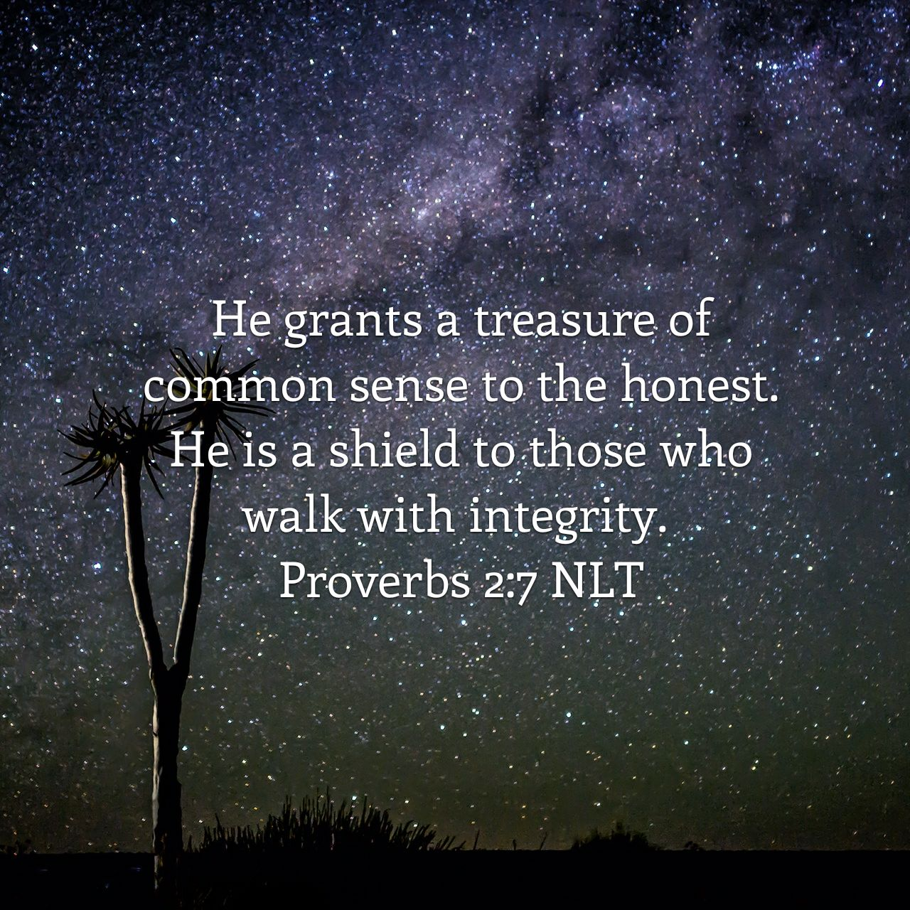 He grants a treasure of common sense to the honest. He is a shield to those who walk with integrity. - Proverbs 2:7 NLT