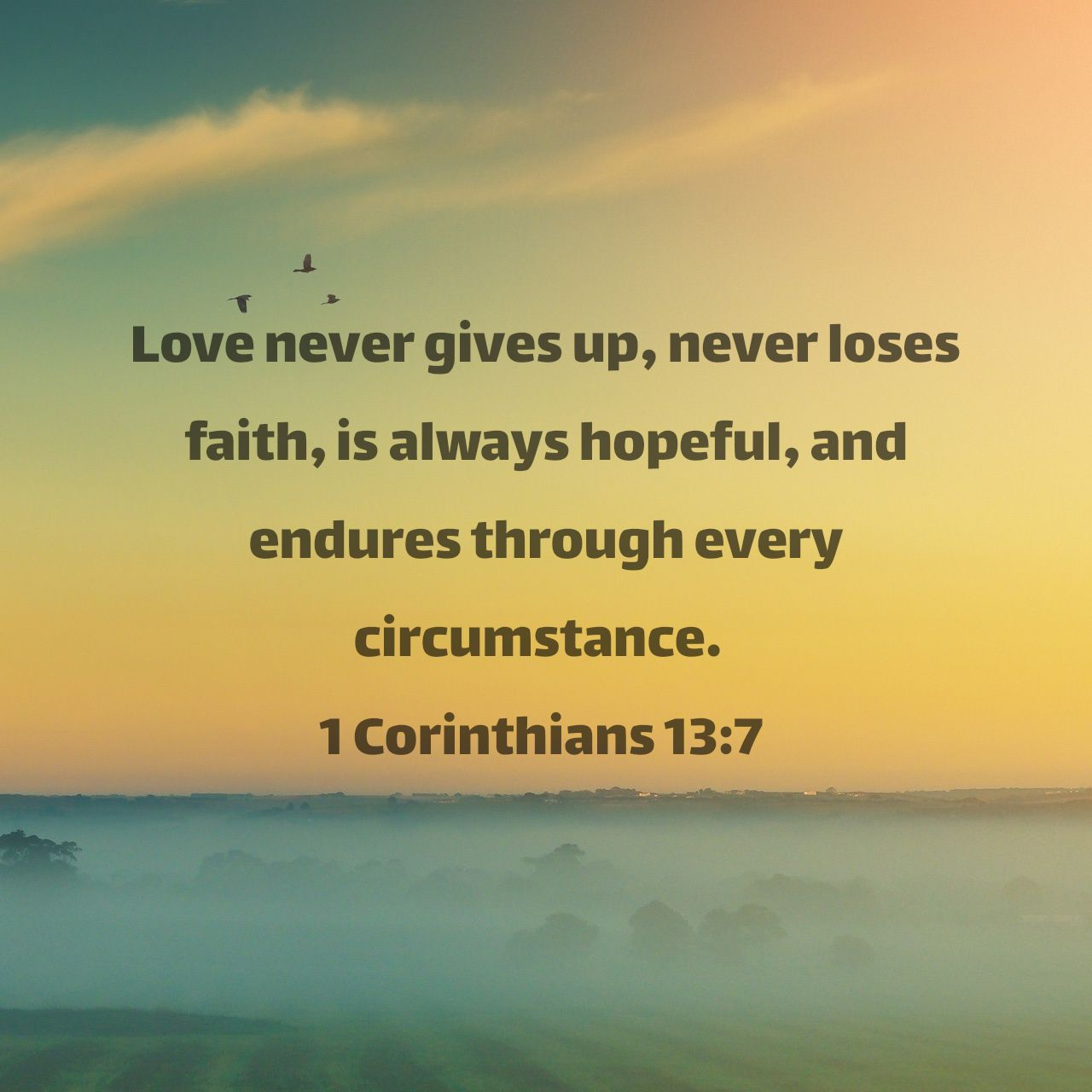 Love never gives up, never loses faith, is always hopeful, and endures through every circumstance. - 1 Corinthians 13:7 NLT